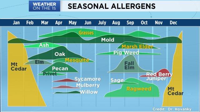 Year-round allergies